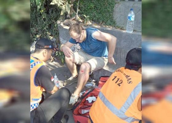 Nusabali.com - pohon-tumbang-dua-wisatawan-terluka