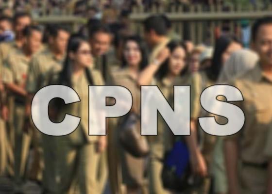 Nusabali.com - pemerintah-buka-100000-lowongan-cpns