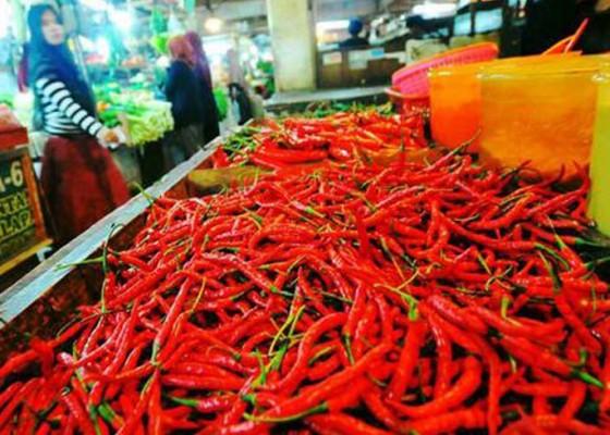 Nusabali.com - jelang-kuningan-harga-cabai-rawit-merah-tembus-rp-80-ribukg