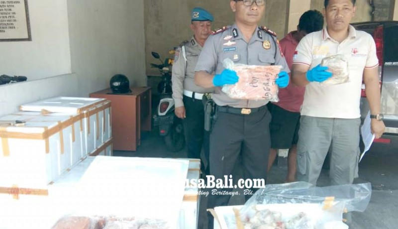 www.nusabali.com-polsek-gilimanuk-amankan-400-kg-daging-ilegal
