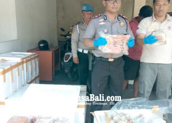 Nusabali.com - polsek-gilimanuk-amankan-400-kg-daging-ilegal