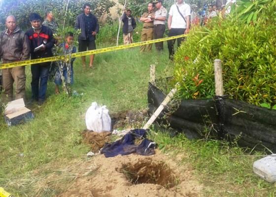 Nusabali.com - toples-berisi-tulang-gegerkan-warga