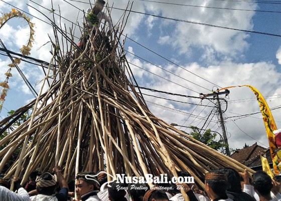 Nusabali.com - tradisi-makotek-perayaan-kemenangan-dan-penolak-bala-di-hari-raya-kuningan