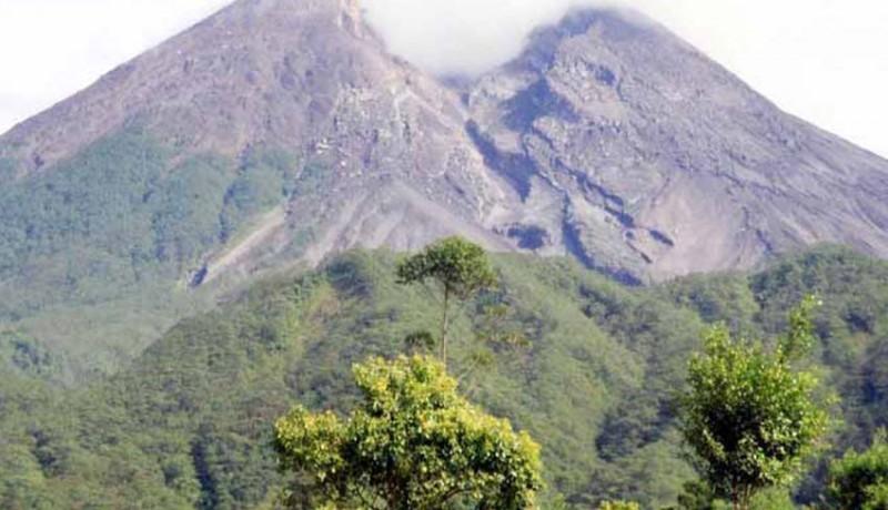 www.nusabali.com-merapi-gugurkan-awan-panas-11-km