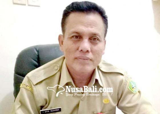 Nusabali.com - stok-hewan-kurban-jelang-idul-adha-mencukupi