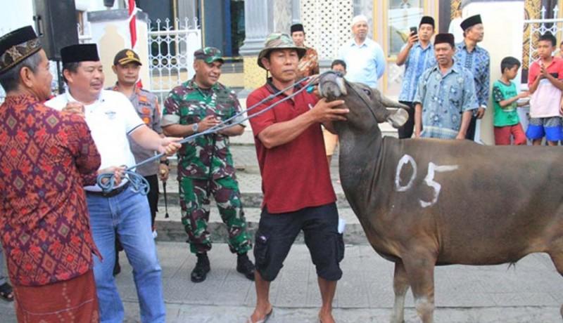 www.nusabali.com-bupati-artha-serahkan-26-ekor-hewan-kurban