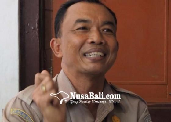 Nusabali.com - kendalikan-hama-tikus-distan-siapkan-burung-hantu