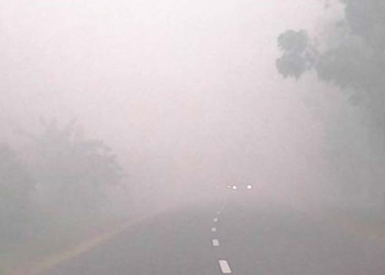 Nusabali.com - kabut-asap-di-palangka-raya-sekolah-diliburkan