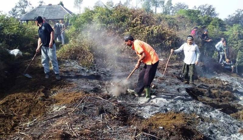 www.nusabali.com-kobaran-api-di-gunung-batukaru-padam