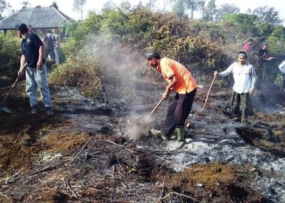 Nusabali.com - kobaran-api-di-gunung-batukaru-padam