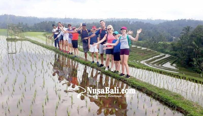 www.nusabali.com-wisman-menyusut-pengelola-wisata-atraksi-lokal-terdampak