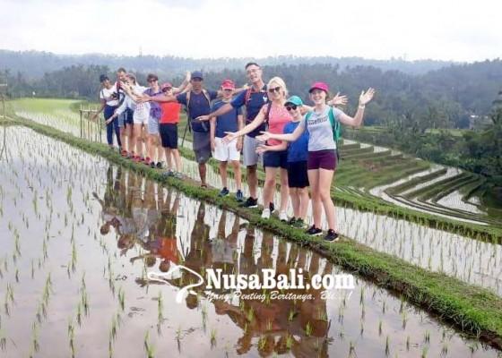 Nusabali.com - wisman-menyusut-pengelola-wisata-atraksi-lokal-terdampak
