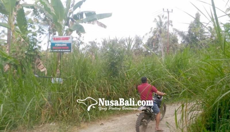 www.nusabali.com-berburu-di-banjar-buungan-denda-rp-2000