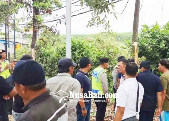 Nusabali.com - lima-sapi-dicuri-pemilik-lapor-polisi