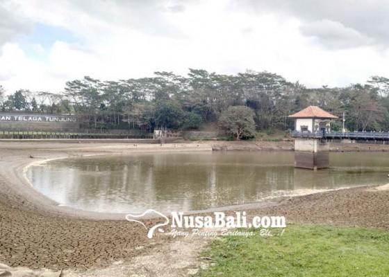 Nusabali.com - kemarau-bendungan-telaga-tunjung-nyat