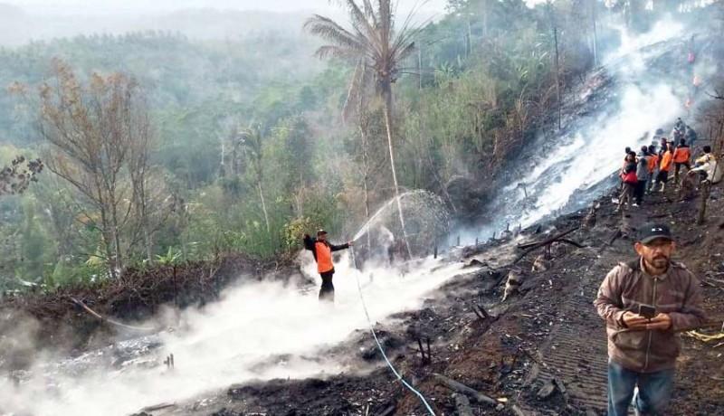 www.nusabali.com-kandang-terbakar-12-ribu-ayam-terpanggang