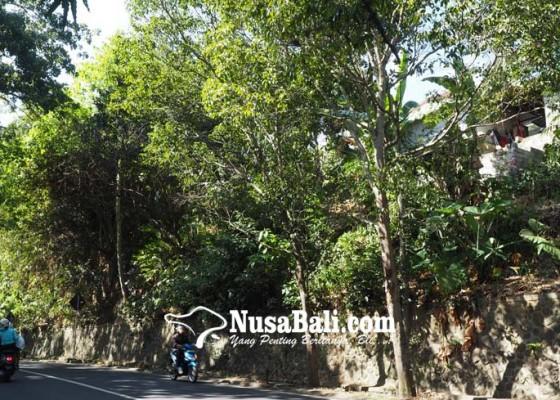 Nusabali.com - warga-di-tebing-tusan-was-was