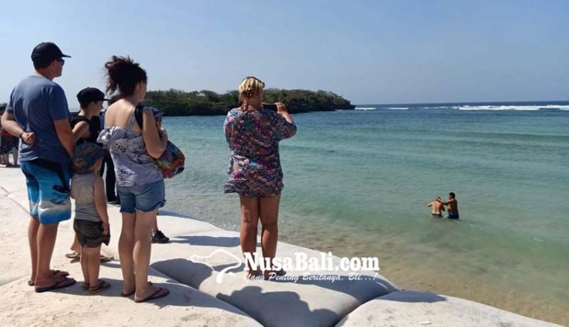 www.nusabali.com-kadis-kelautan-bali-observasi-jenis-hiu