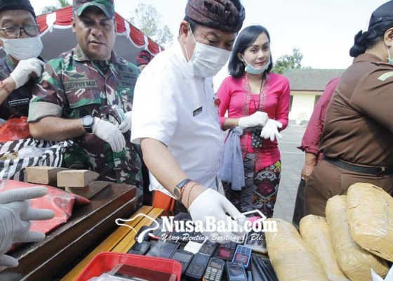 Nusabali.com - kejari-jembrana-musnahkan-12-kg-ganja