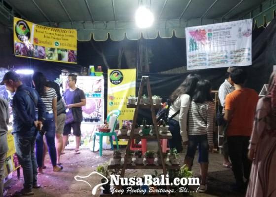 Nusabali.com - tanaman-karnivora-pukau-pengunjung-sanur-village-festival