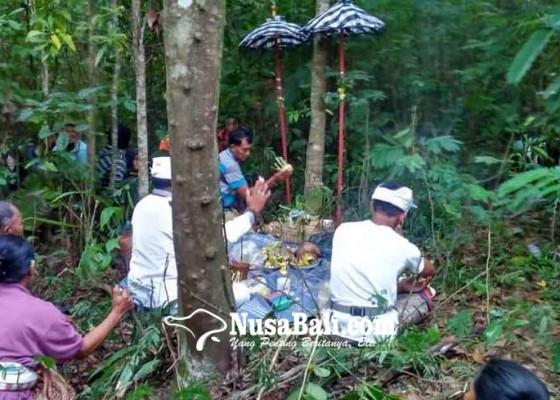 Nusabali.com - keluarga-korban-gelar-upacara-nebusin-di-hutan-kaliandra