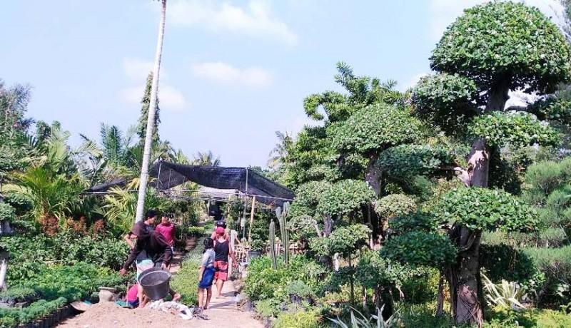 www.nusabali.com-karang-bengang-praktik-nyata-tri-hita-karana