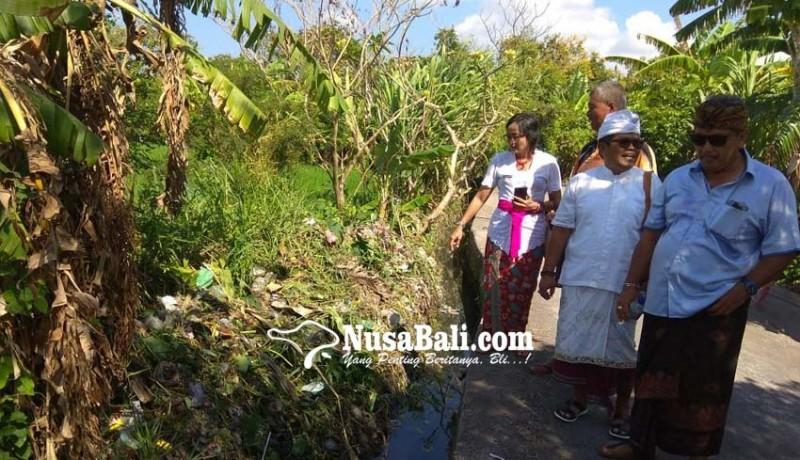 www.nusabali.com-persawahan-dipenuhi-sampah-plastik