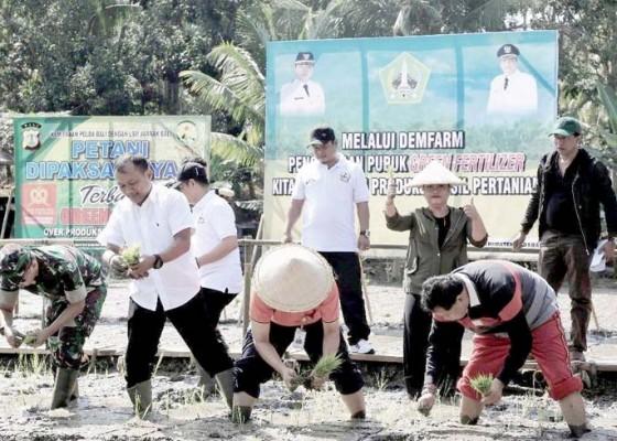 Nusabali.com - bupati-eka-perjuangkan-sugih-petani