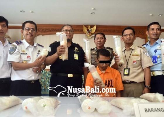 Nusabali.com - petugas-bandara-selundupkan-17192-benih-lobster