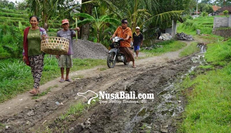 www.nusabali.com-jalan-banjar-umasari-kangin-mirip-selokan