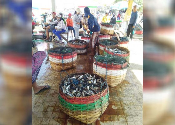 Nusabali.com - produksi-perikanan-tangkap-mencapai-210159-ton