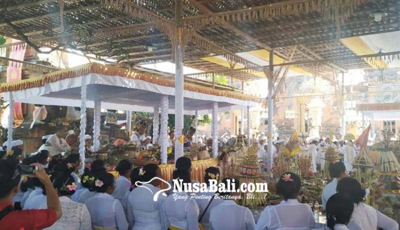 www.nusabali.com-desa-adat-kerobokan-gelar-upacara-tawur-balik-sumpah-utama