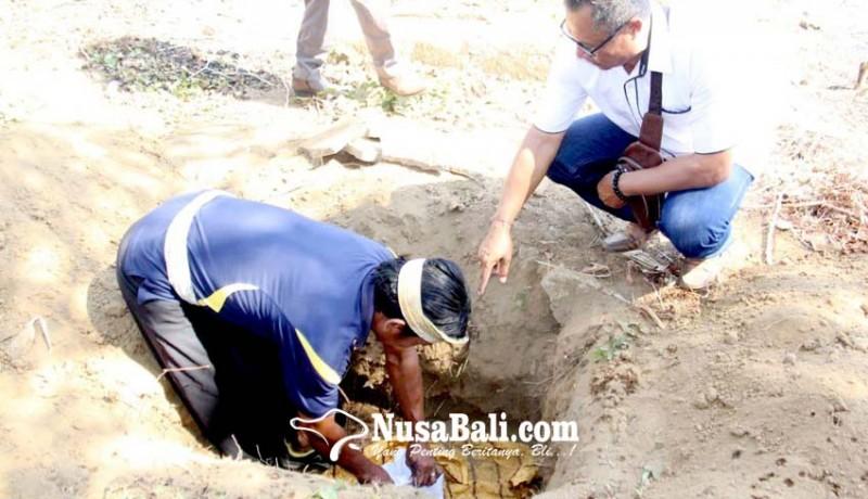 www.nusabali.com-dinas-sosial-kubur-tulang-belulang-mr-x