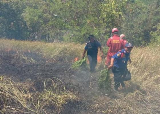 Nusabali.com - area-obyek-bukit-belong-terbakar