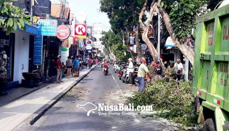 www.nusabali.com-angin-kencang-pohon-tumbang-di-kuta