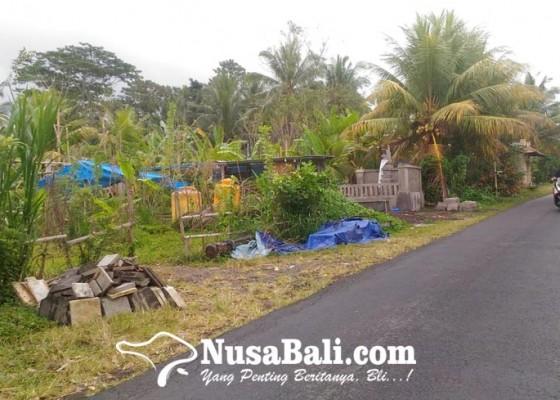 Nusabali.com - nasib-bengang-di-tangan-pengembang