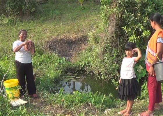 Nusabali.com - kemarau-warga-banjar-pendem-cari-air-bulakan