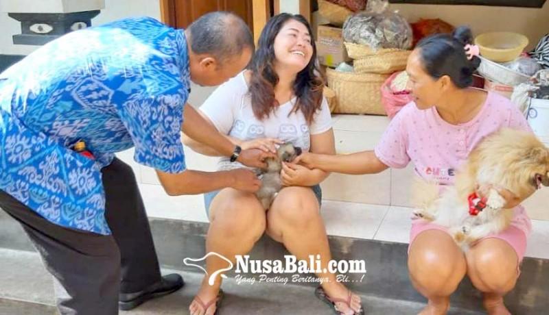 www.nusabali.com-15-persen-hpr-belum-tervaksin-badung-lakukan-penyisiran