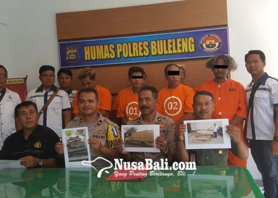 Nusabali.com - polisi-bekuk-sindikat-illegal-loging