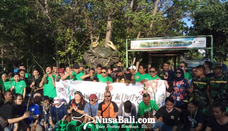 www.nusabali.com-100-bibit-mangrove-ditanam-di-kawasan-kampoeng-kepiting
