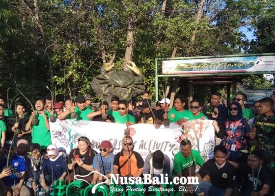 Nusabali.com - 100-bibit-mangrove-ditanam-di-kawasan-kampoeng-kepiting