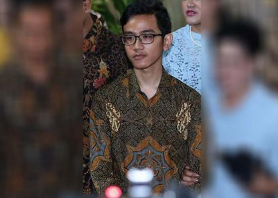 Nusabali.com - kandidat-cawawali-solo-spanduk-putra-jokowi-bertebaran
