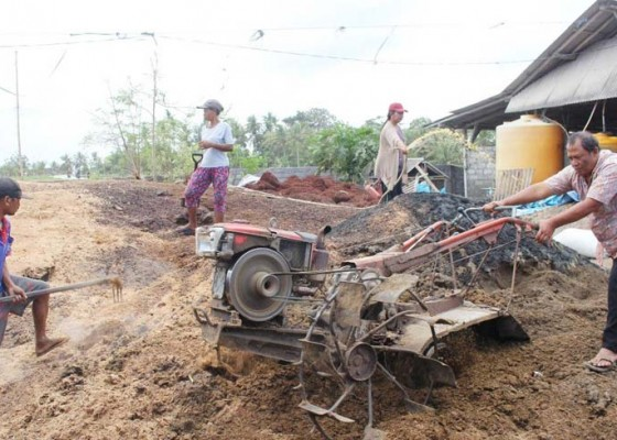 Nusabali.com - tim-pengabdian-unud-gandeng-ukm-kembangkan-produksi-pupuk-organik