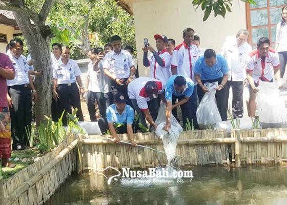 Nusabali.com - warga-binaan-diajak-bertani-dan-beternak