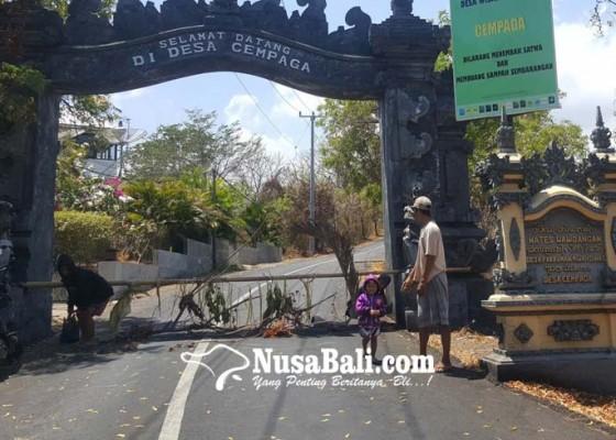 Nusabali.com - sebagai-rangkaian-upacara-ngaben-krama-di-rantau-wajib-pulang