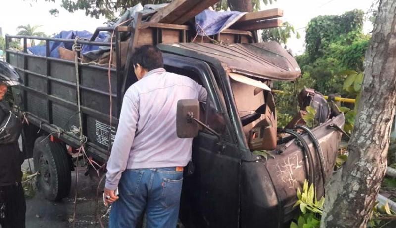 www.nusabali.com-truk-bawa-penyu-tabrak-pohon-sopir-kabur