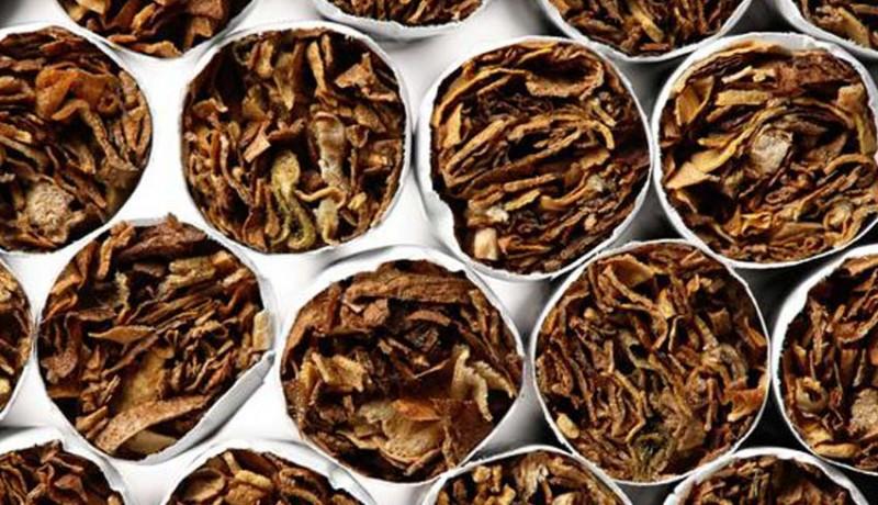 www.nusabali.com-pakar-saatnya-bali-pelopori-kajian-ilmiah-tembakau-alternatif