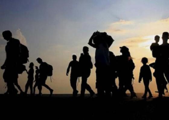 Nusabali.com - 64-warga-yang-tinggal-di-wamena-transit-di-bali