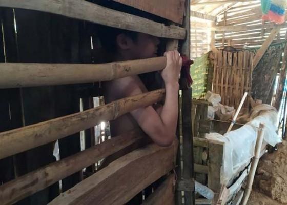 Nusabali.com - bocah-12-tahun-dikurung-di-kandang-ayam