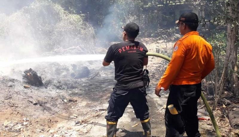www.nusabali.com-cuaca-panas-picu-terbakarnya-tumpukan-kayu